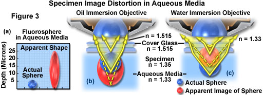 water immersion figure3