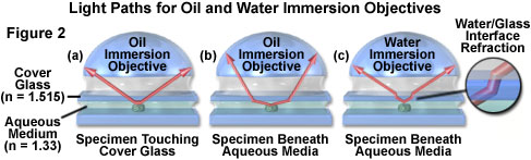 water immersion figure2